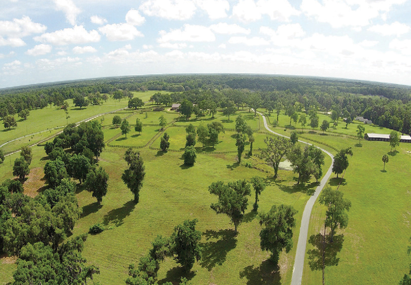 SIENNA FARM 283.43± Acres | Marion County, Florida Property ID: 2900736 | $4,900,000