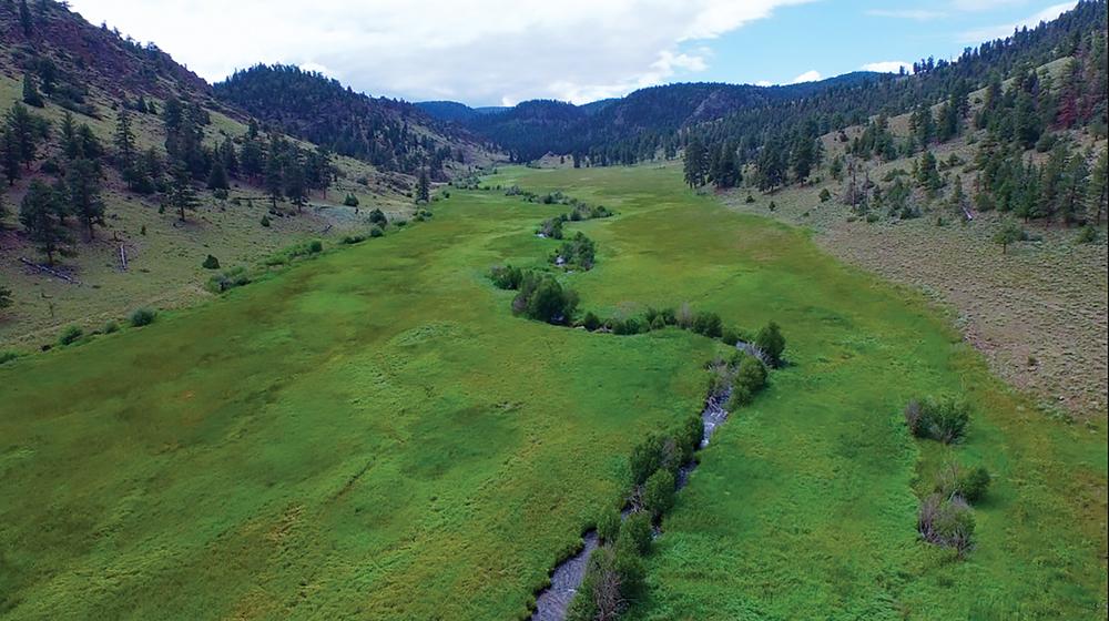 Paradise-Creek-Land-(2)-EDIT.jpg