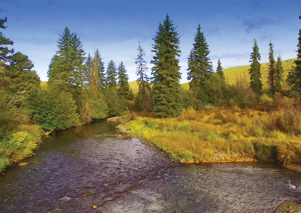 Britstol-River-Land-EDIT.jpg