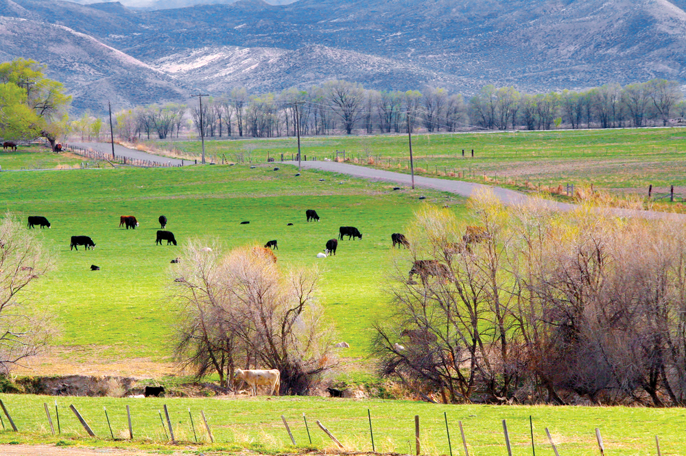 HARPER VALLEY RANCH 401± Acres | Malheur County, OR Property ID: 2382528 | $1,975,000