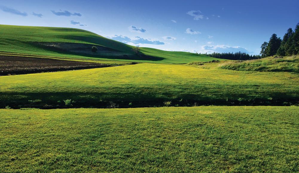 SPOKANE GETAWAY RANCH 170± Acres | Spokane County, WA Property ID: 1660269 | $1,500,000