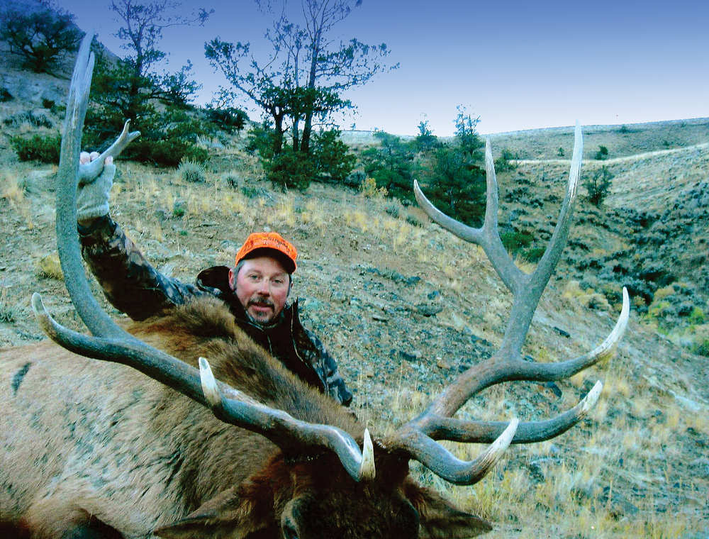Goshen-Elk-(2)-EDIT.jpg