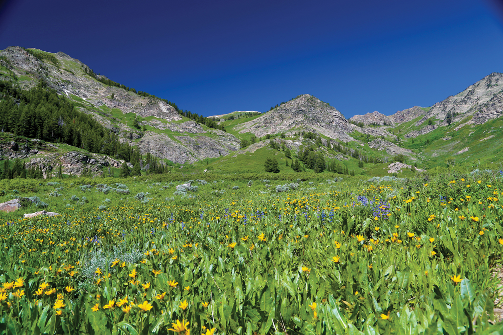 WASATCH PEAKS RANCH 12,740± Acres | Morgan County, UT Property ID: 2690397 | $46,000,000