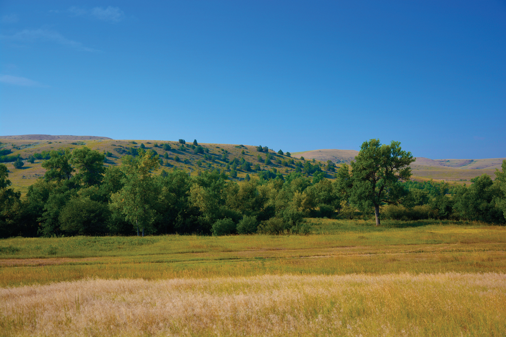 MYDLAND RANCH 373± Acres | Sheridan County, WY Property ID: 2806000 | $2,000,000