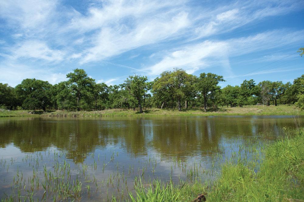 Kendall-55-acres-1607-EDIT.jpg