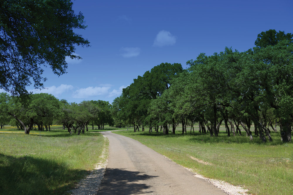 25± ACRE TRACT • $333,500