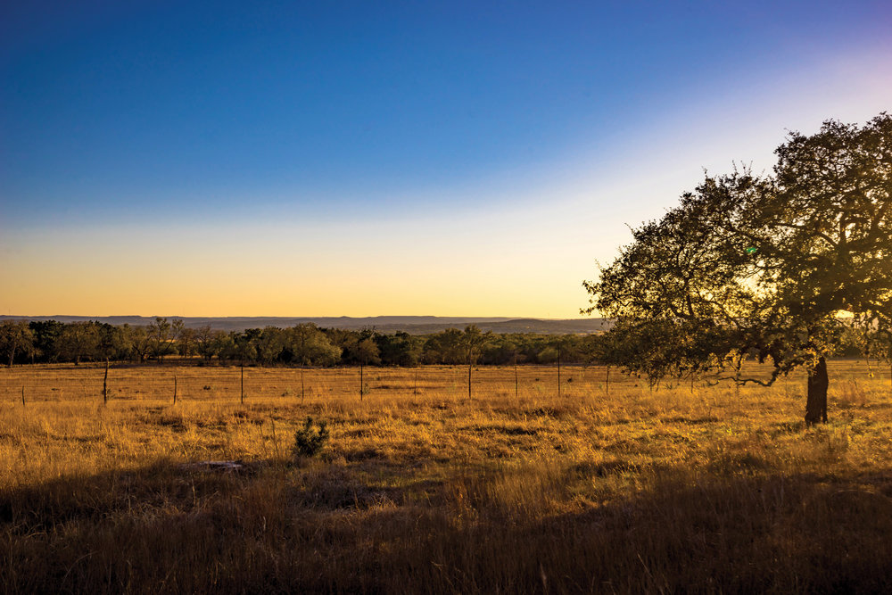 SISTERDALE RANCH 170± Acres | Kendall County, TX Property ID: 2632445 | $1,521,500