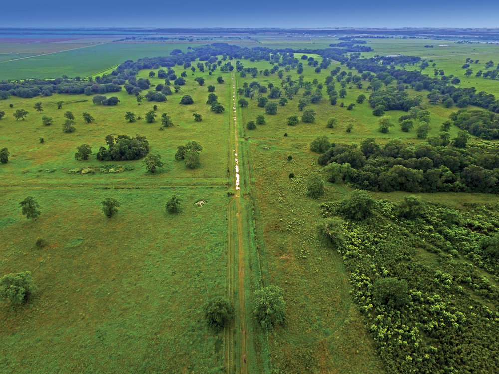 O.B. RANCH 1,700± Acres | Wharton County, TX Property ID: 3259206 | $8,500,000