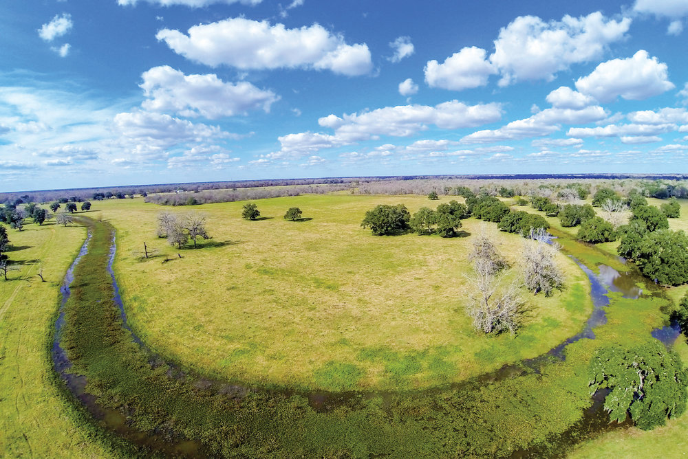 CROWELL RANCH 1,650± Acres | Brazoria County, TX Property ID: 2906068 | $4,950,000
