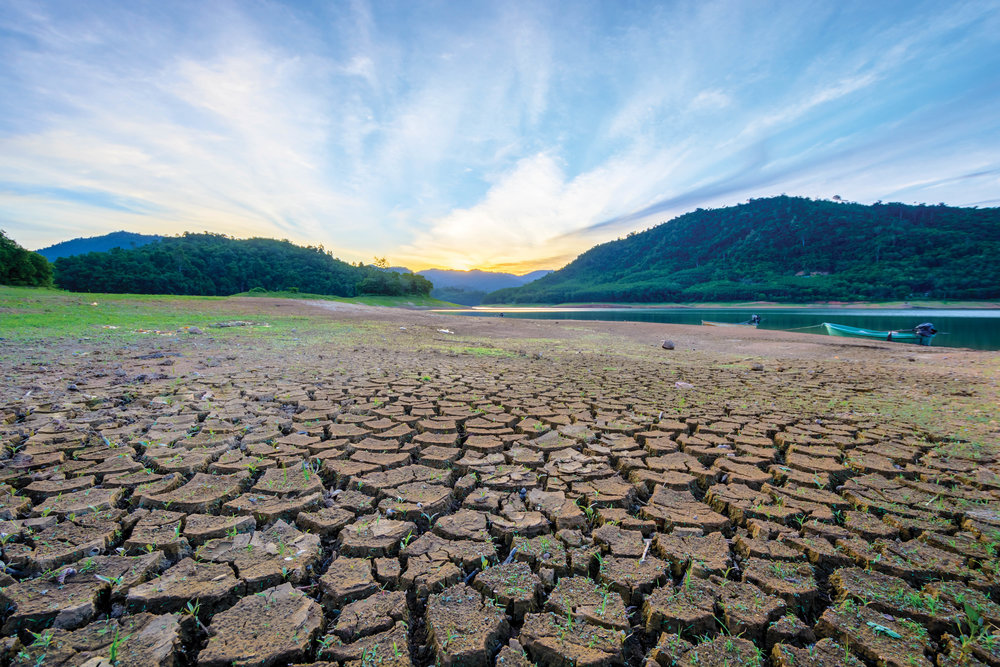 NO LAND. NO WATER.<strong><a href=http://www.landmagazines.com/radar-1/2016/11/28/no-land-no-water>More</a>