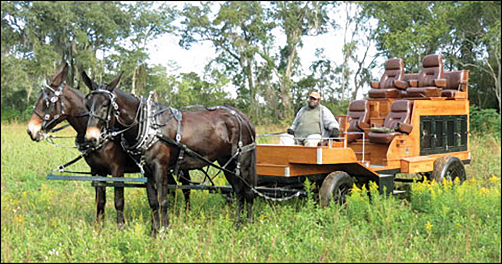 One of the beautiful mule-drawn, bird-hunting wagons on Four Oaks Plantation.