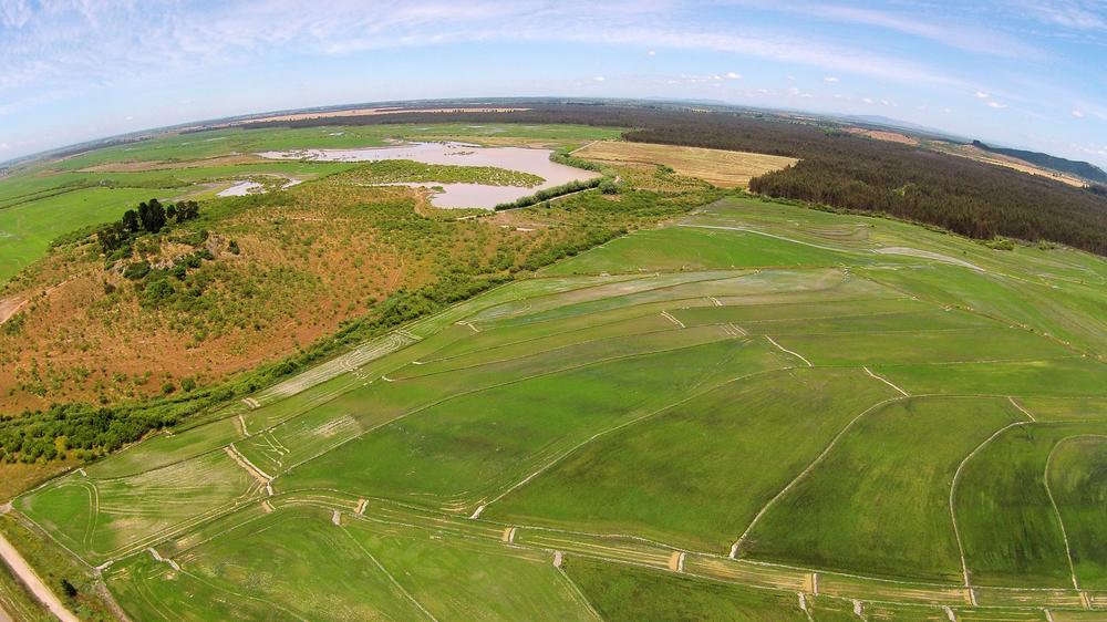 (2) Plantación de Arroz · Retiro, Chile © LOF·drone para  LOFscapes