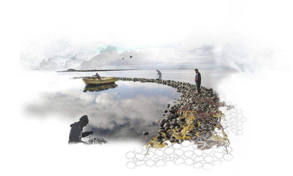 (6) Imagen corral de pesca, Utilización de los recursos, Cucao, Chiloé.jpg