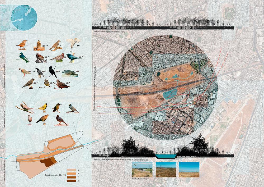(4) Proyecto de corredor ecológico para el ingreso de aves en los terrenos del actual Parque Errazuriz y los pozos de extracción aledaños en Santiago sur poniente. Miguel Zárate para el curso Reclamando Sitios, impartido en la PUC.