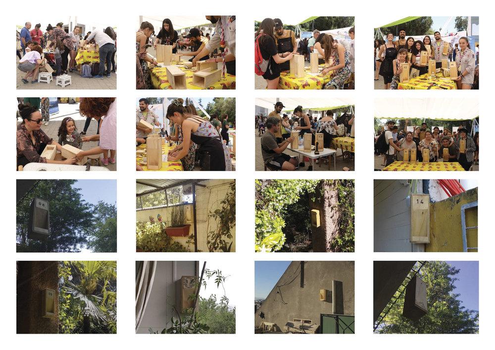 (6) Collage Taller Día de la Fauna + Instalación Comederos en diferentes locaciones de Santiago© Paisaje Táctico
