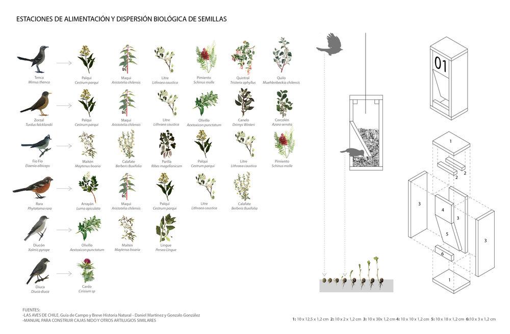 (5) Diagrama Estaciones de Alimentación y Dispersión Biológica de Semillas© Paisaje Táctico