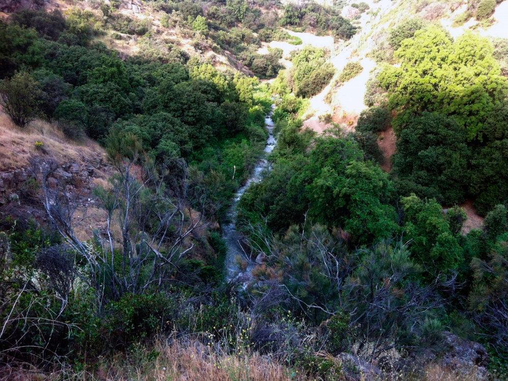 (2) Santuario de la Naturaleza© Camila Medina para LOFscapes