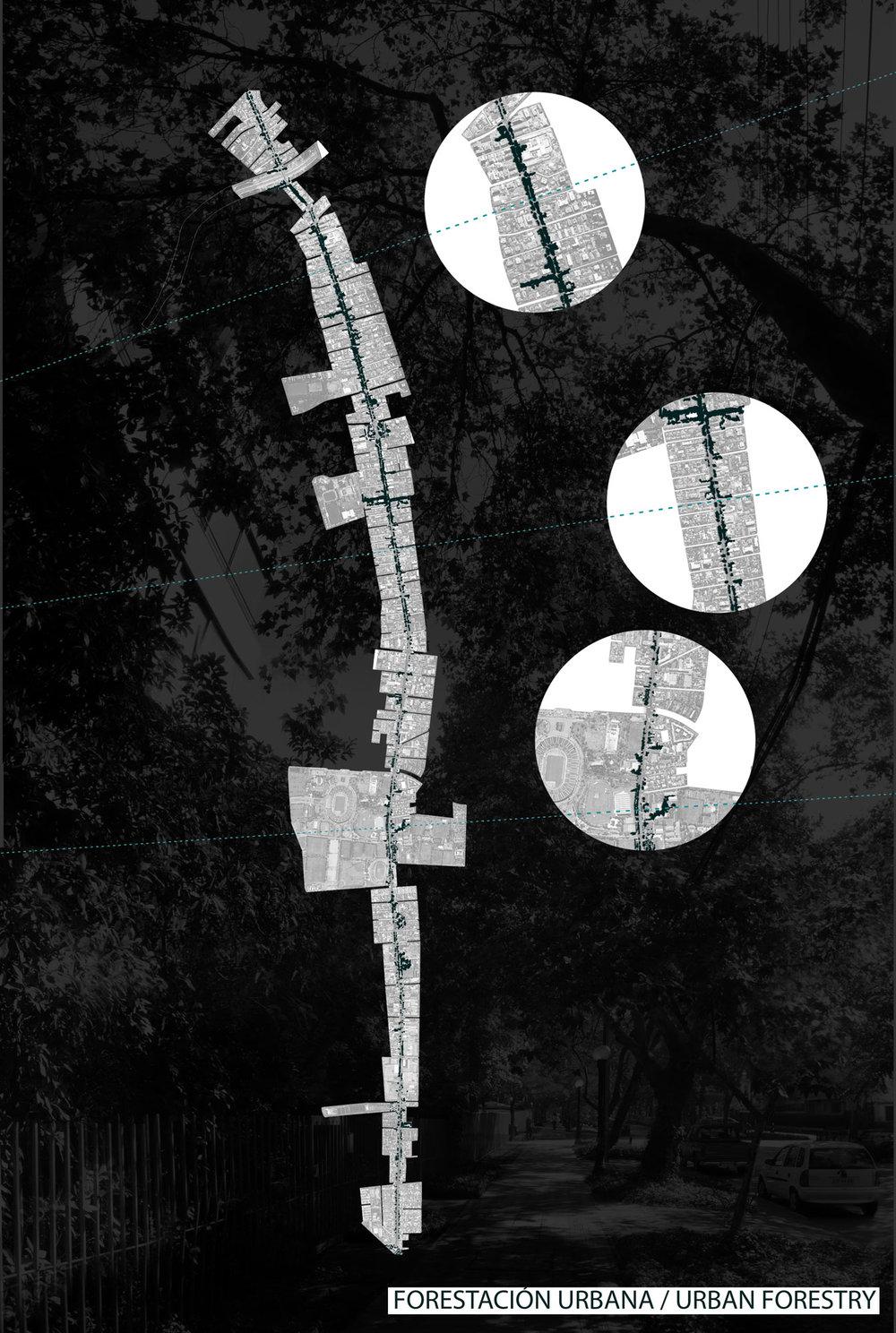 (4) Infraestructuras de Desague en la Av. Pedro de Valdivia © Camila Medina para LOFscapes