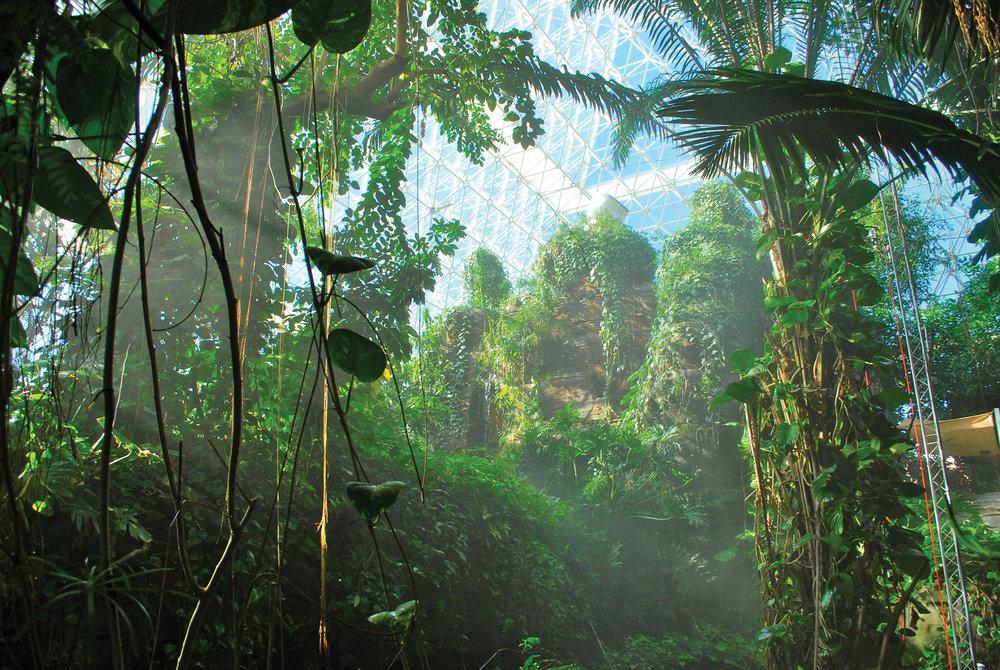 (3) The rainforest biome, Biosphere 2, 1991 [http://www.ecohustler.co.uk]