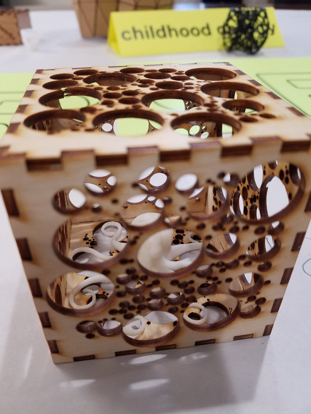 octopus in box.jpg