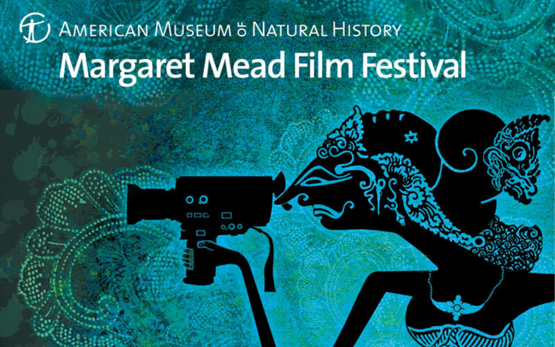 Margaret Mead Film Festival, American Museum of Natural History    Programming Consultant (2012 - Present)