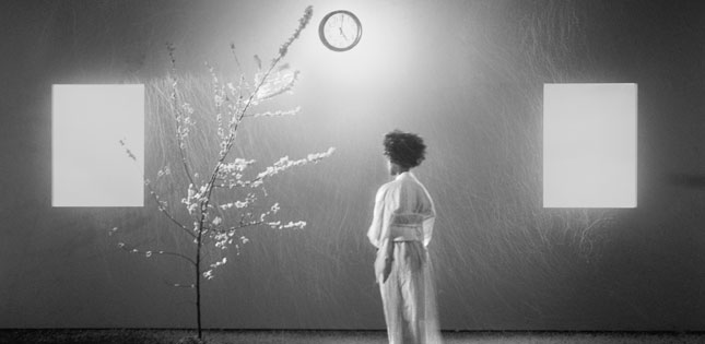 Carrie Mae Weems'Grace Notes: Reflections for Now Producer