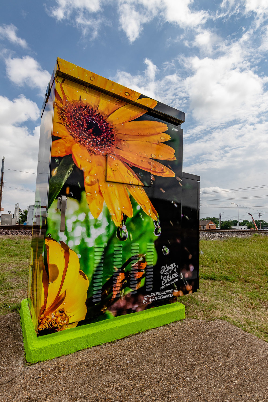 Grand Prarie Traffic Signal Box Public Art Project