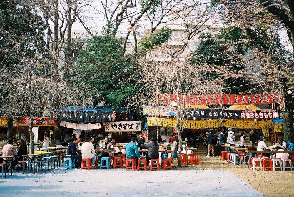 Street markets and sakura