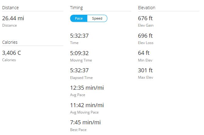 Day 3 Run