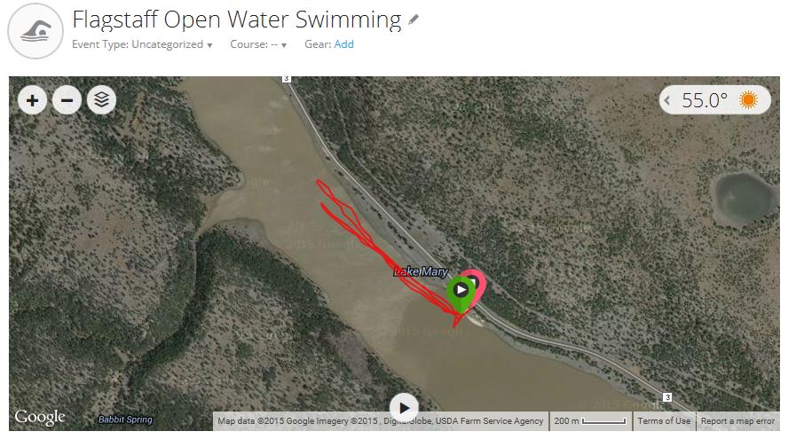 Day 7 Swim