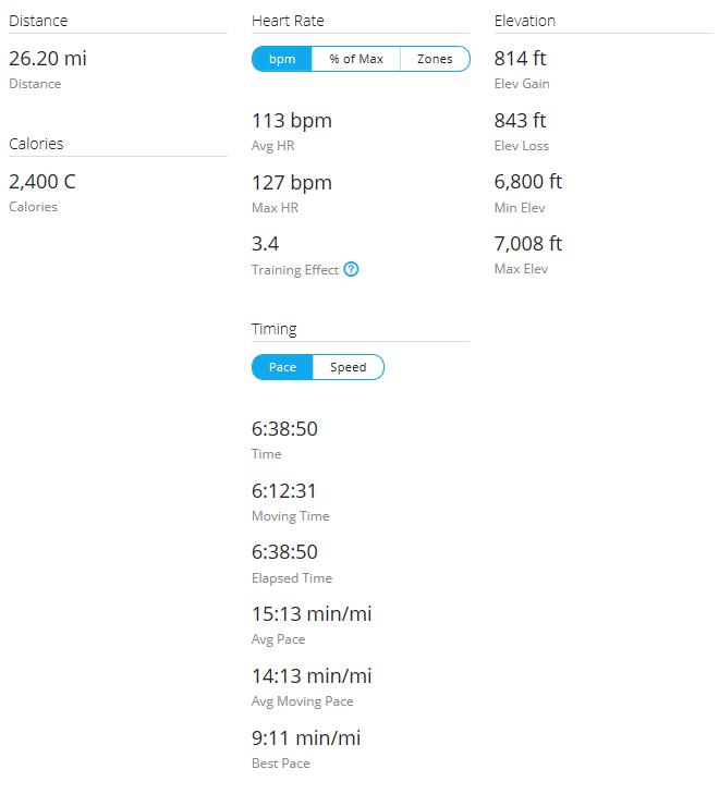 Day 7 Run