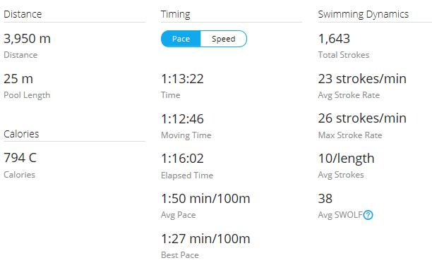 Day 14 Swim