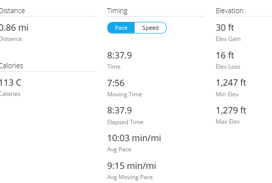 Day 14 Run 3