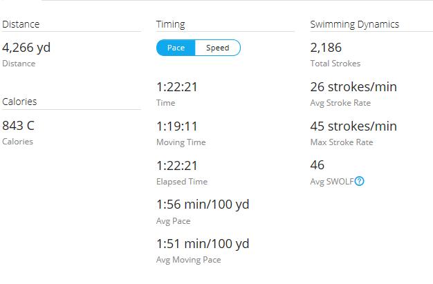 Day 16 Swim