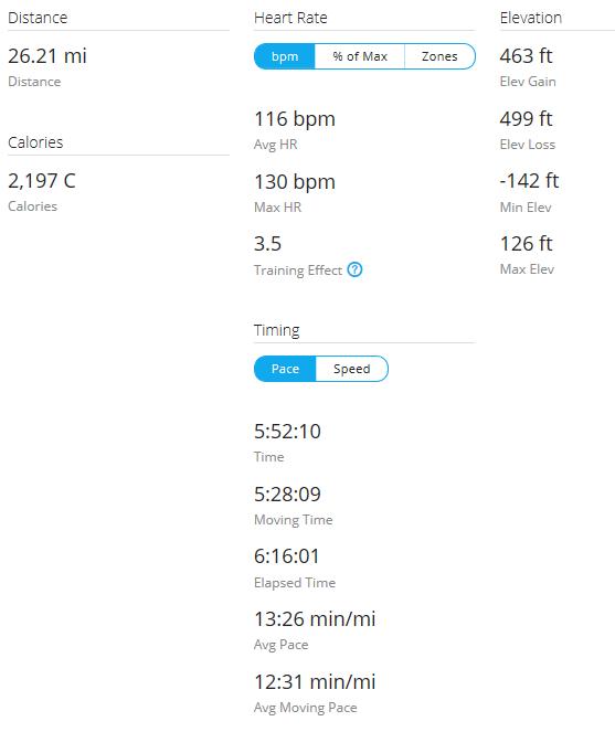 Day 20 Run