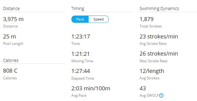 Day 23 Swim