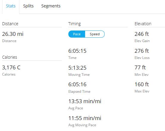 Day 23 Run