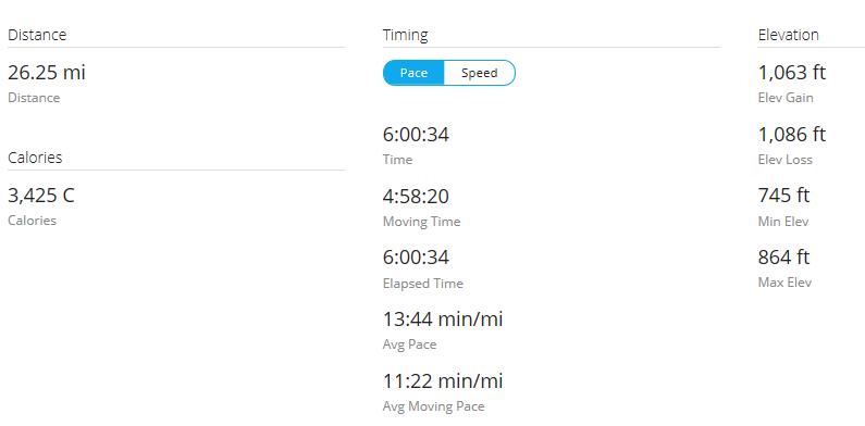 Day 24 Run