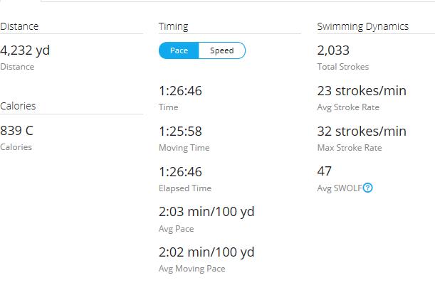 Day 25 Swim