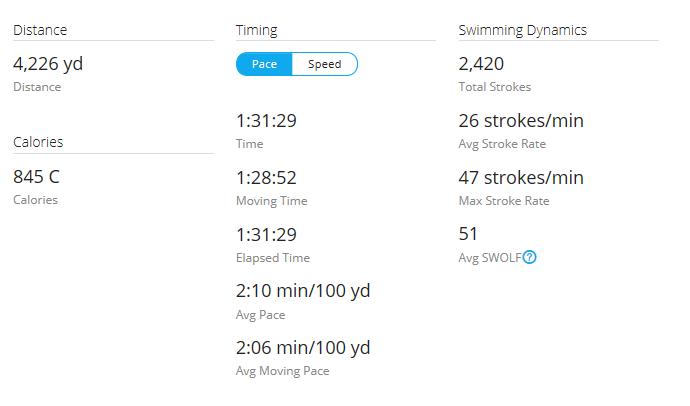 Day 26 Swim