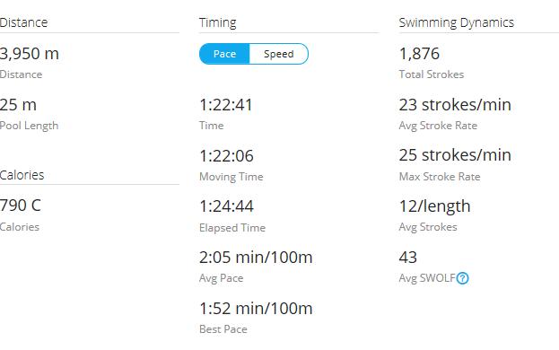 Day 28 Swim