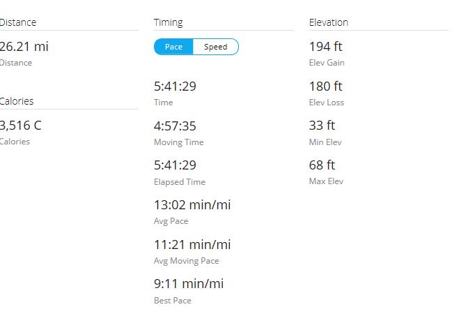 Day 28 Run