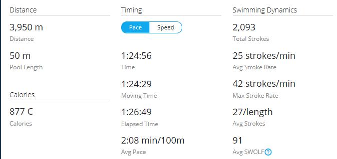 Day 30 Swim