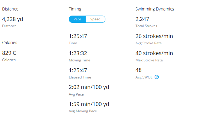 Day 32 Swim