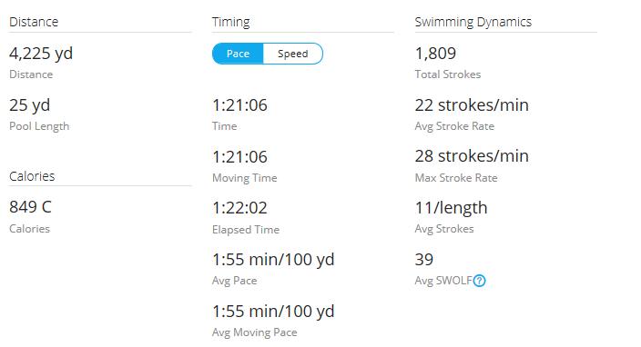 Day 33 Swim