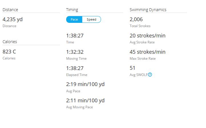 Day 35 Swim