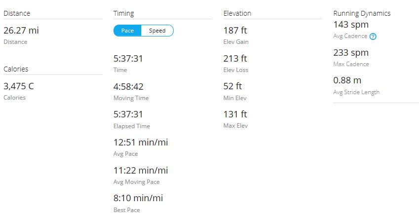 Day 35 Run