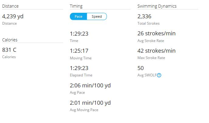 Day 36 Swim