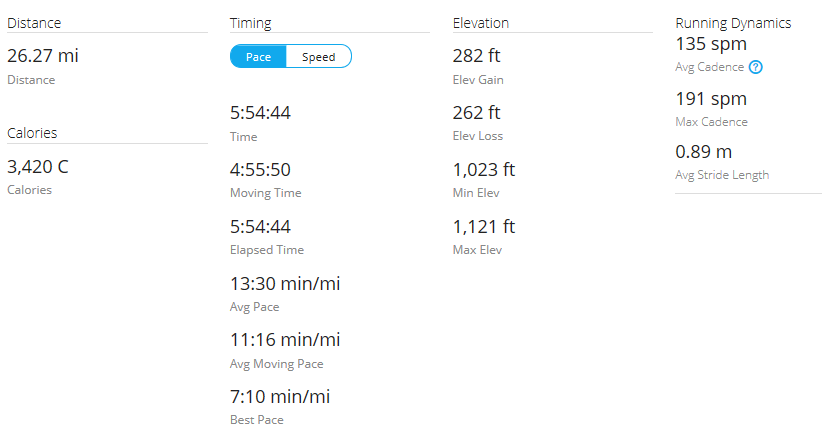 Day 38 Run