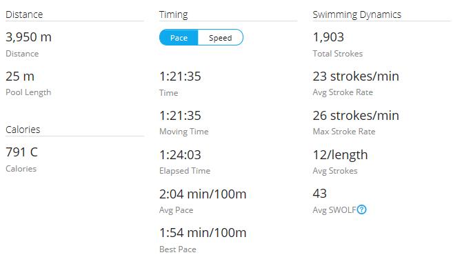 Day 39 Swim